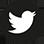 SocialMediaI_Twitter